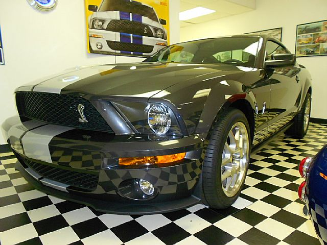 2007 Ford Shelby for sale