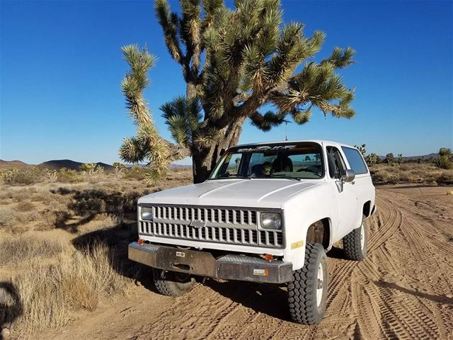1982 Chevrolet K5 for sale