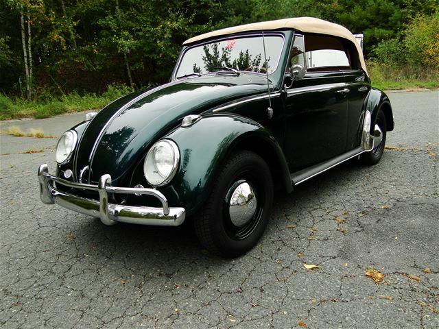 1963 volkswagen beetle for sale alva oklahoma. Black Bedroom Furniture Sets. Home Design Ideas