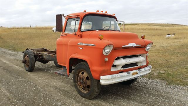 1956 Chevrolet COE for sale