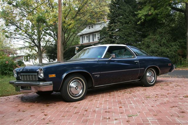 1974 Buick Century for sale