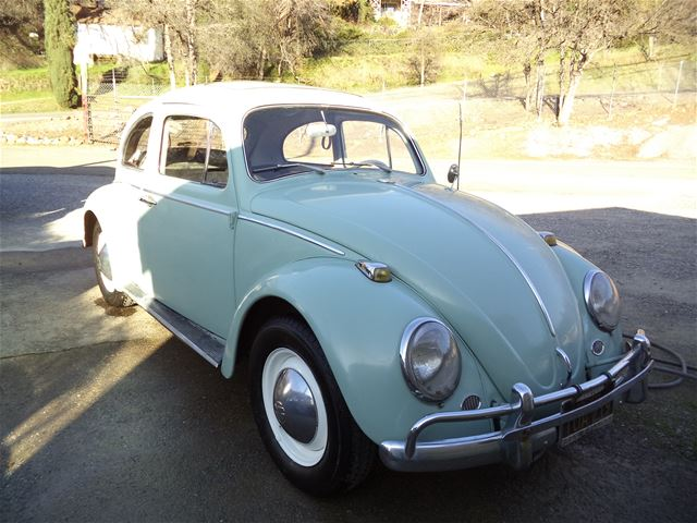 1964 volkswagen beetle for sale placerville california. Black Bedroom Furniture Sets. Home Design Ideas