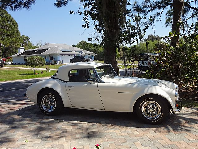 1953 Austin Healey Sebring for sale