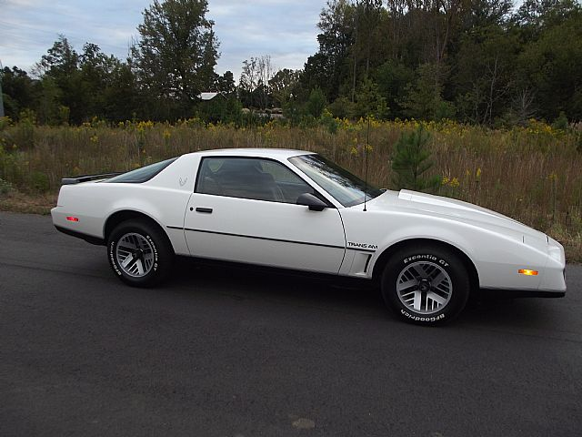 1983 Pontiac Firebird for sale