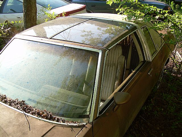 1981 Buick Regal for sale