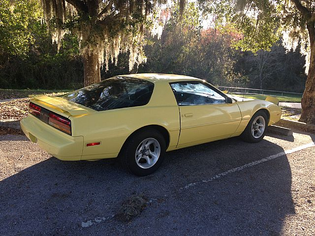 1991 pontiac firebird for sale tampa florida. Black Bedroom Furniture Sets. Home Design Ideas