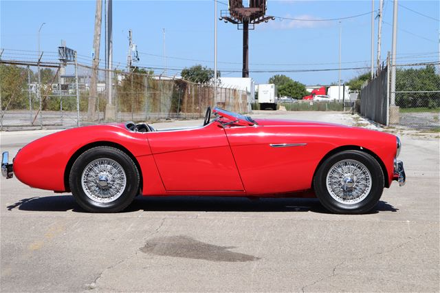 1954 Austin Healey 100 for sale