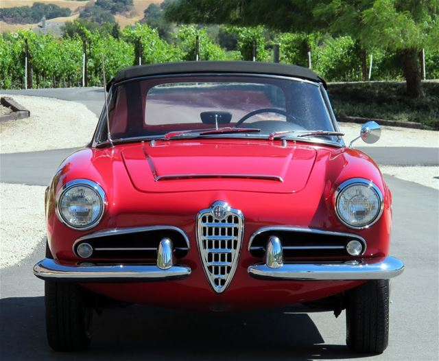 1964 Alfa Romeo Giulia Spider for sale