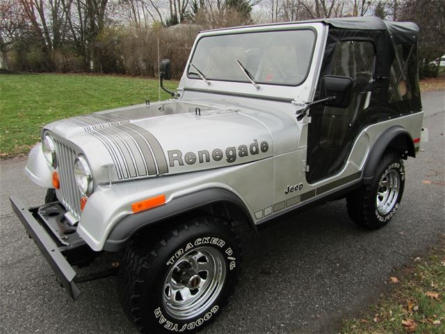 1979 jeep cj5 for sale clarence new york. Black Bedroom Furniture Sets. Home Design Ideas