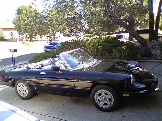 1984 Alfa Romeo Spider for sale