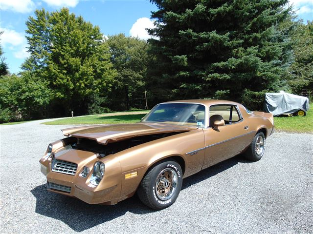 1979 chevrolet camaro for sale franklin pennsylvania. Black Bedroom Furniture Sets. Home Design Ideas
