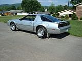 1982 Pontiac Trans Am for sale