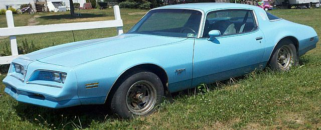 1977 Pontiac Firebird for sale