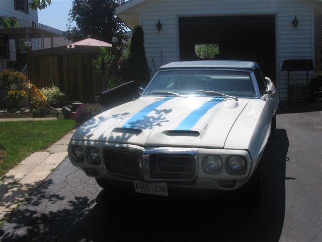 1969 Pontiac Firebird Trans Am Clone For Sale Brantford  Ontario