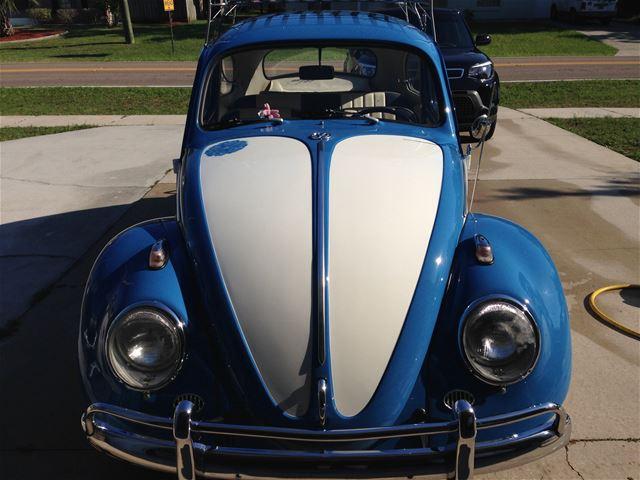 1961 Volkswagen Beetle For Sale Spring hill, Florida