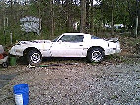 1981 Pontiac Firebird for sale
