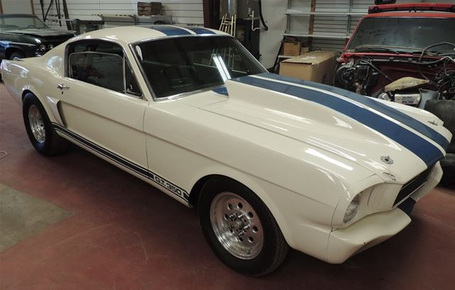 1966 Ford Shelby for sale