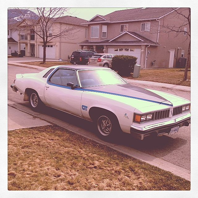 1977 Chevrolet LeMans for sale
