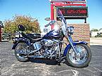 2001 Other H-D FLSTFi Picture 2
