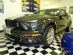 2007 Ford Shelby Picture 2