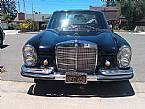 1967 Mercedes 250S Picture 2