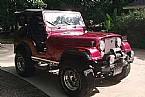 1980 Jeep CJ5 Picture 2