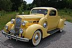 1937 Packard 120 Picture 2