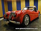 1952 Jaguar XK120 Picture 2