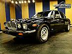 1987 Jaguar XJ6 Picture 2
