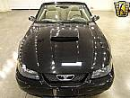 2003 Ford Mustang Picture 2