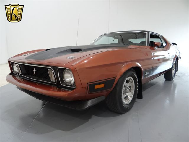 1973 ford mustang for sale tinley park illinois. Black Bedroom Furniture Sets. Home Design Ideas