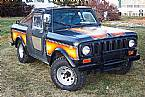 1979 International Scout Picture 2