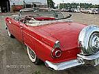 1956 Ford Thunderbird Picture 2