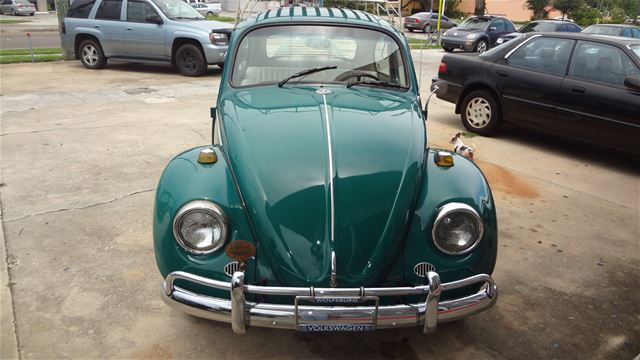 1967 volkswagen beetle for sale clearwater florida. Black Bedroom Furniture Sets. Home Design Ideas
