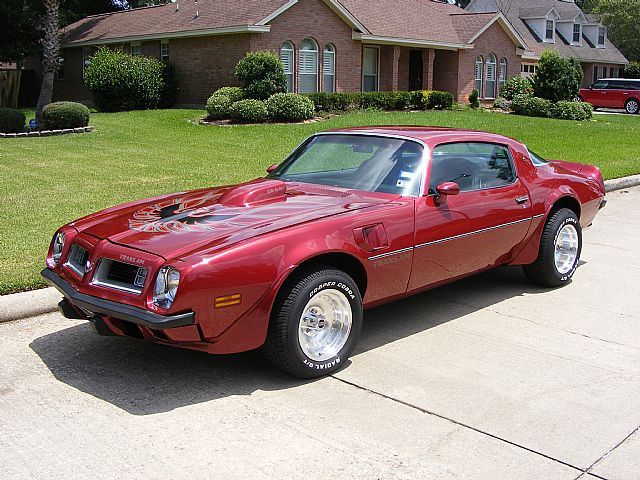 trans am 40 ventura 2 1975 pontiac trans amTrans Am 1975