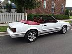 1984 Ford Mustang Picture 2