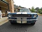 1966 Shelby GT350 Picture 2