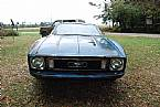 1973 Ford Mustang Picture 2