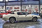1976 Pontiac Trans Am Picture 2