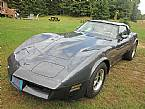 1981 Chevrolet Corvette Picture 2