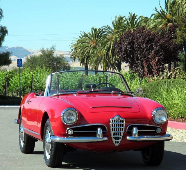 1964 Alfa Romeo Giulia Spider 1600 For Sale East Coast