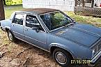 1981 Oldsmobile Omega Picture 2