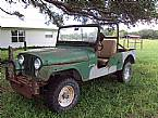 1973 Jeep CJ6 Picture 2