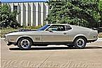 1971 Ford Mustang Picture 2