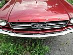 1964.5 Ford Mustang Picture 2