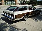 1976 Chevrolet Caprice Estate Picture 2