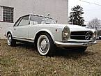 1966 Mercedes 230SL Picture 2