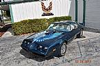 1979 Pontiac Trans Am Picture 2