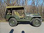 1955 Jeep Willys Picture 2