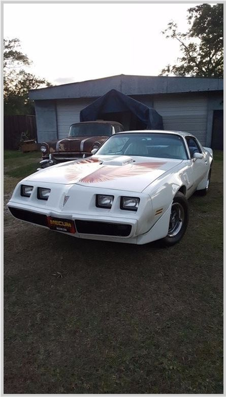 Devil 16 Car >> 1979 Pontiac Trans Am For Sale Baytown, Texas